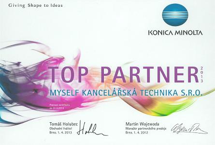 Top Partner 2013