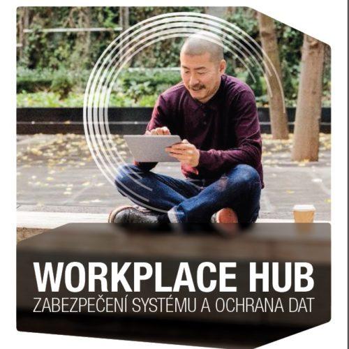 Workplace Hub, zabezpečení a ochrana
